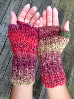 Travelers_mitts5_small2