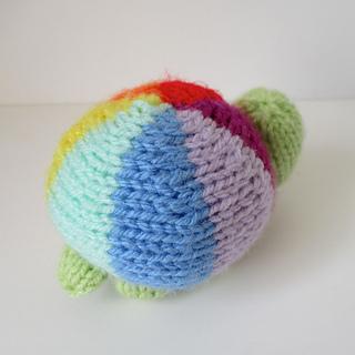 Rainbow_tortoise_img_7879_small2