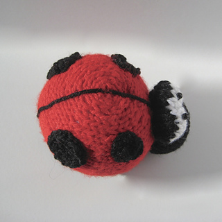 Spots_the_ladybird_17908705988_69028584d4_o_small2