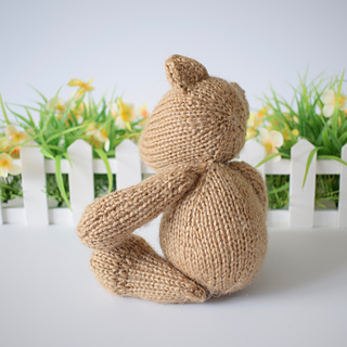 Nutmeg_bear_dsc_0008__1__small2
