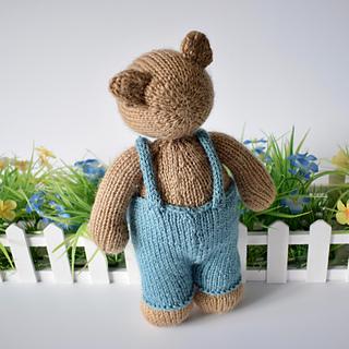 Teddy_bearteddy_bear_dsc_0007__3__small2