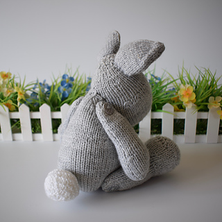 Henry_rabbit_dsc_0014__2__small2