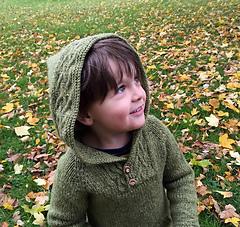 Robinhoodie2-sm_small
