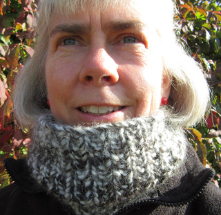 Cowl_-_very_close_up_small2