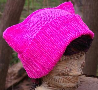 Ravelry Kitty Ears Hat Pattern By Gari Lynn