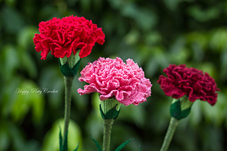 Ravelry Carnation Flower pattern by Happy Patty Crochet