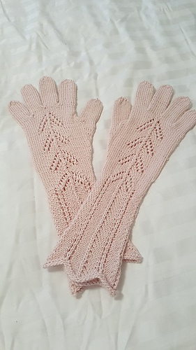 20161007_090810_gloves_resized_medium