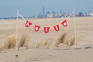 11-8-2014__hi_jenny_brown__banner_beach_photos216_small2