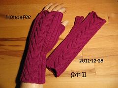 2011-12-28_syltii_small