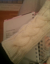 20121127_202854-1_small_best_fit