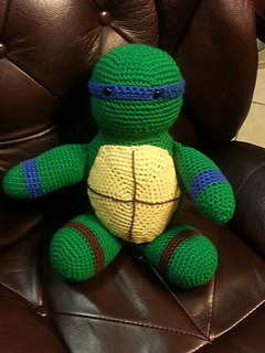 Ben_turtle_2_small2