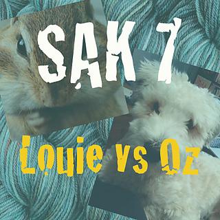 Sak7_logo_small2
