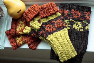 Ravelry Fall Color Fingerless Mitts Pattern By Janelle Serio