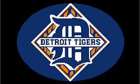 Detroit_tigers_throw_small_best_fit