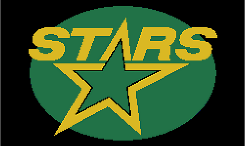 Dallas_stars_charted_throw_medium