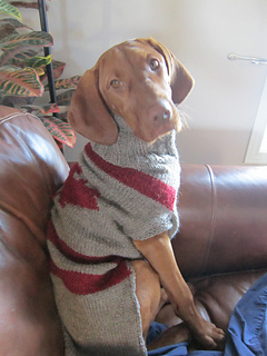 Ravelry Large Dog Sweater Pattern By Tricothon