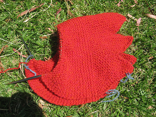Chook-knitside-3_small2