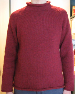 Roll_neck_c_small2