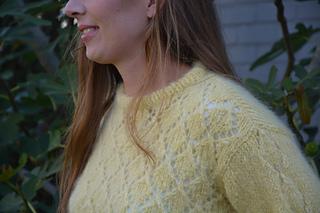 2232a1a3fe653 Ravelry  Zwavel pattern by Julie Jaeken