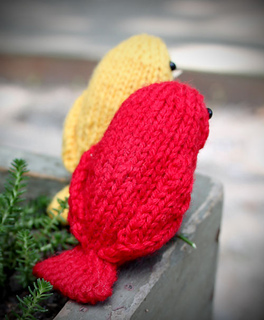 Birdsback_small2