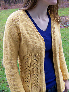 Yellow_cardigan_small2