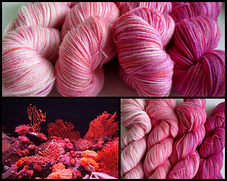 Coral_reef_collage_small2