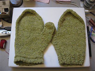 Mittens_bgk_small2