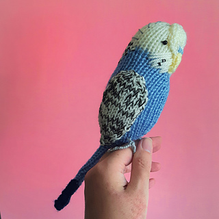 Budgie_lid_image_1_small2