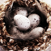 Knitted_nest_easter_2013_2_small_best_fit