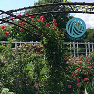 Botanic-garden-stamp_small2