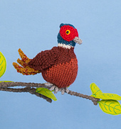 Pheasant_small_small_best_fit