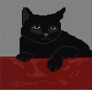 Black_cat_small2