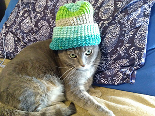 Ravelry: Simple Joy - Sport/DK Hat pattern by Kathleen Baer