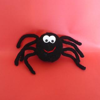 Spider_2_small2