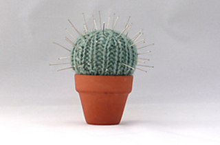 Cactus_rect_small2