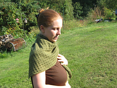 Evergreen-2012-1-pattern_small