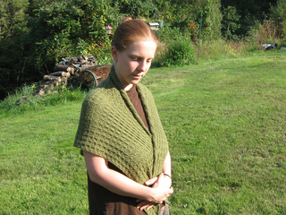 Evergreen-2012-4-pattern_small2