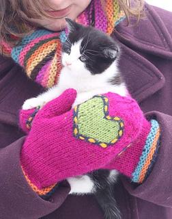 Blog_single_heart_w-_kitten_small2