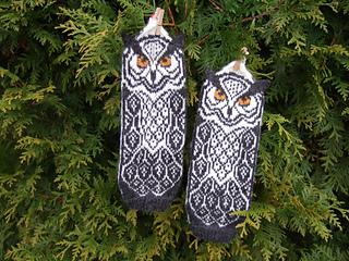 Owl_around_brittmarit1_small2