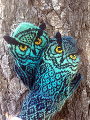 Blue_owl7_small