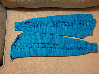 Blueberry_sleeves_5-14_small2