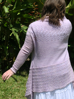 Pf-back-and-sleeve_small2