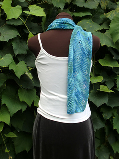Pf5-backview-w-curl_small2