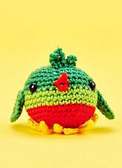 Robin_small