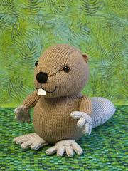 Beaver_bevan_1_small