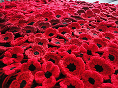 Crocheted_poppies_5_versions_small