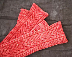 Staghorn-mitts-2_small
