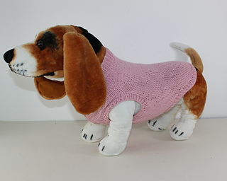 Aran_dog_coat1_small2