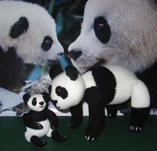Panda_and_baby11_small2