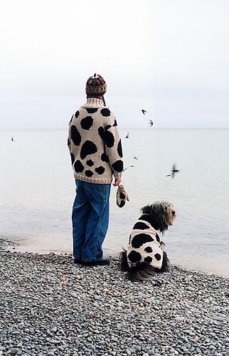 Cow-dog_medium
